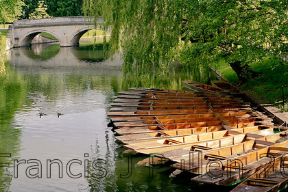 7491-S1-8034 E 